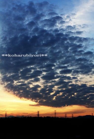 うろこ雲と朝焼け