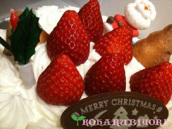 エリカーノのクリスマスケーキ.jpg